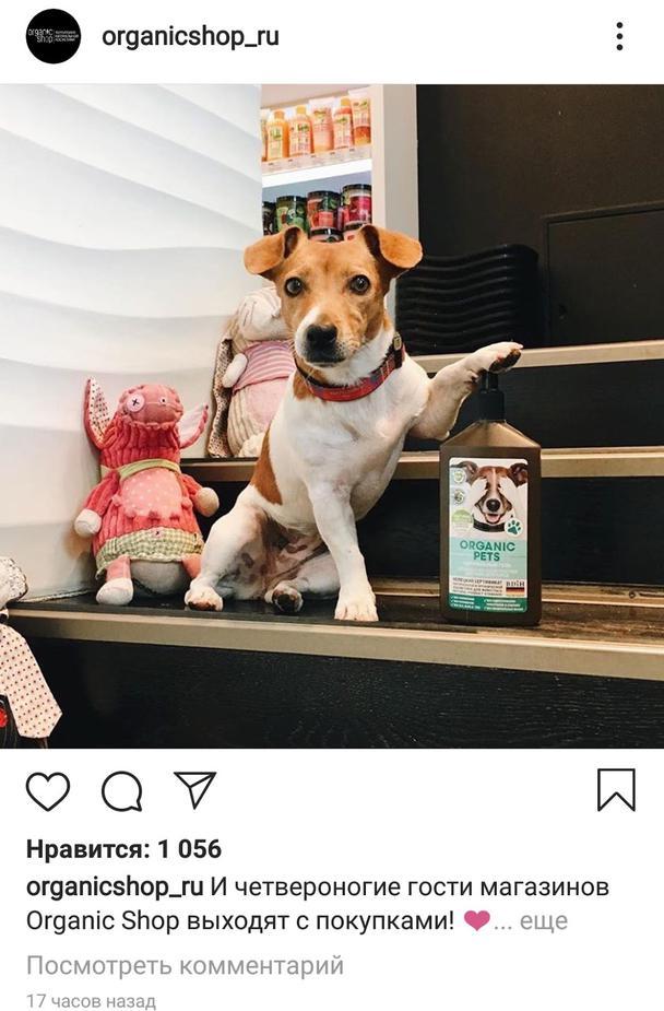 здесь можно было попросить подписчиков отметить кого-то, кто любит щенков