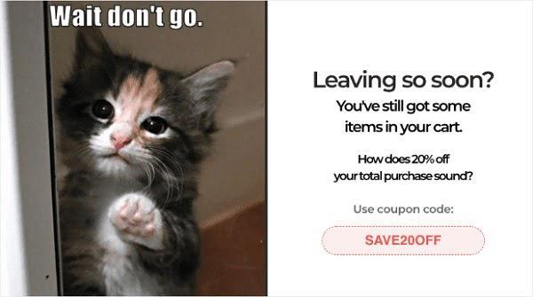 Текст на картинке: Подожди, не уходи Уже уходите? В вашей корзине остались товары в корзине. Как насчет 20% скидки на весь заказ? Используйте промокод: save20off