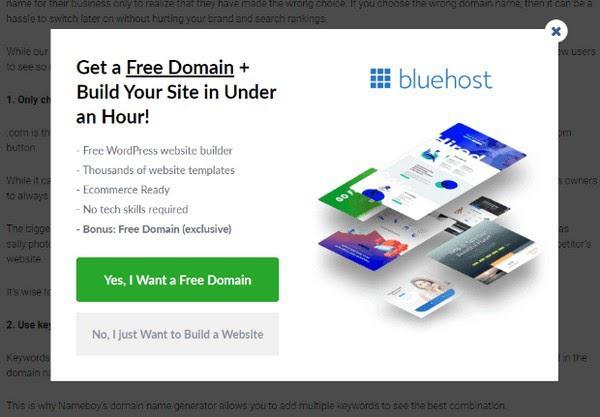 Первая опция: «Да, я хочу бесплатный домен» Вторая опция: «Нет, я просто хочу создать сайт»