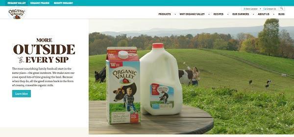 Логотип Organic Valley — пример удачного брендинга