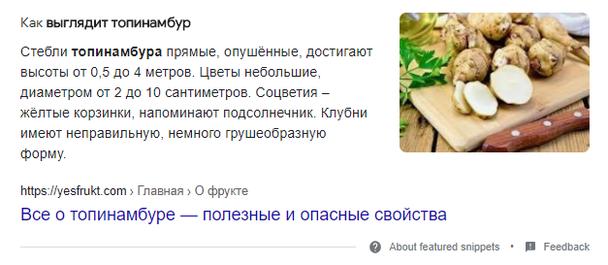 Пример сниппета в виде определения с фото на запрос «Что такое топинамбур как выглядит?»