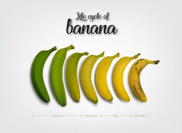 На какой стадии зрелости находится ваша вирусная кампания? Жизненный цикл банана (незрелый, немного незрелый, зрелый, очень зрелый)