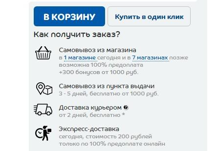 Информация о доставке в карточке товара магазина «Спортмастер»